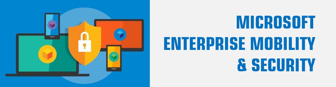 Microsoft EMS